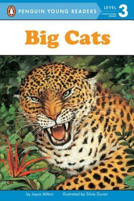 Big Cats By Milton, Joyce/ Duran, Silvia (ILT)